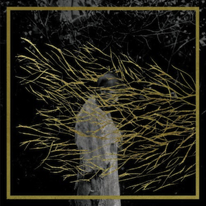Forest - Swords - Engravings 300