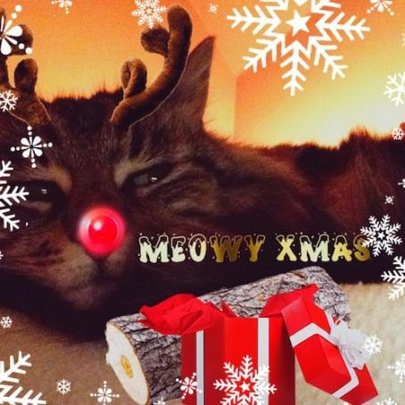 festive-sneefler